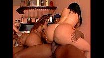 EVASIVE ANGLES Big Bubble Butt Brazilian Orgy Vol 7 CD 1