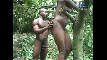 Ghana forest saga