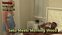 Seka Meets Pussy Bandits Morning Wood